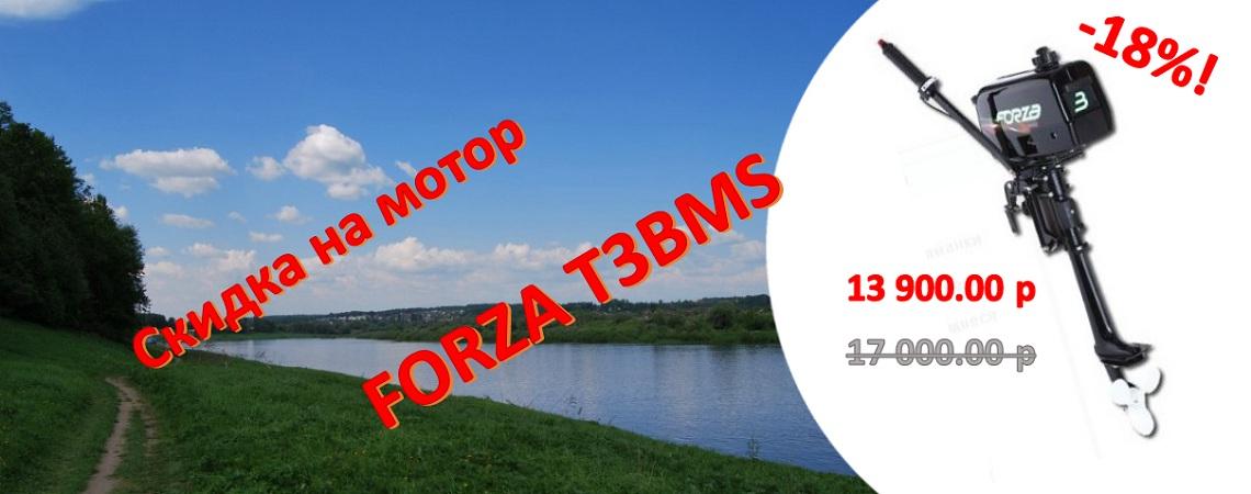 Скидка 12% на мотор FORZA T3BMS